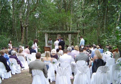 Wedding at Lily Pond in the forest